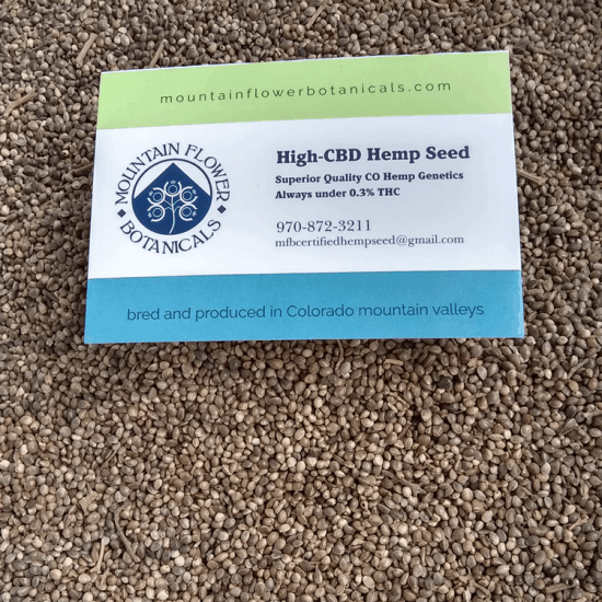Mountain Girl, High CBD Hemp Seed from Mountain Flower Botanicals
