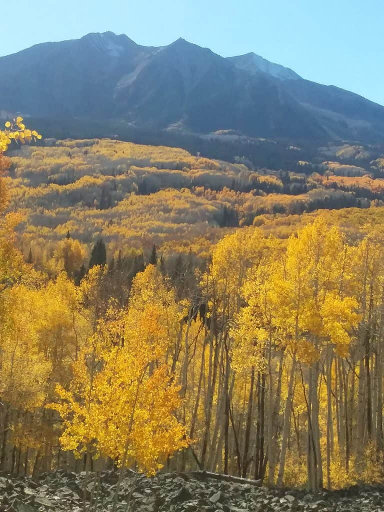 Colorado mountains flanked by glowing Aspens in fall foliage